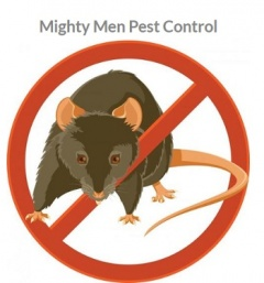 Mighty Men Pest Control