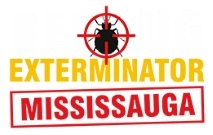 Bed Bug Exterminator Mississauga