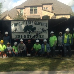 Top Cut Tree Service